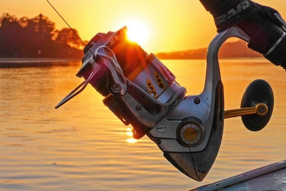 Baitcaster vs Spinner Reel