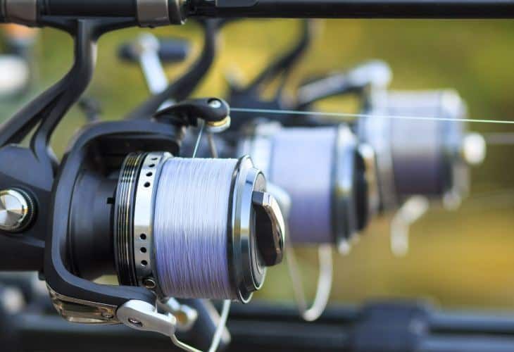 Best Fishing Reel