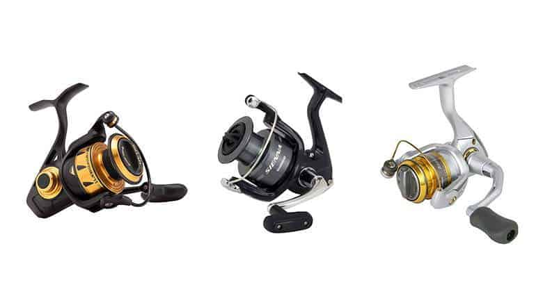 How to Set the Drag on a Fishing Reel