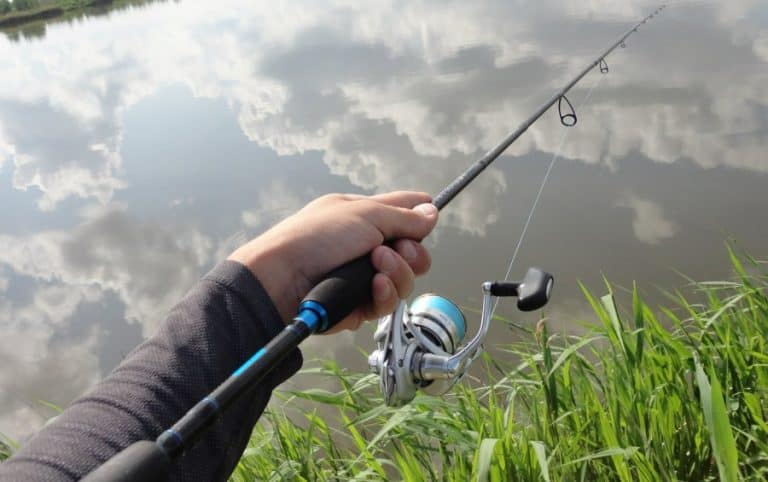 ultralight bass fishing